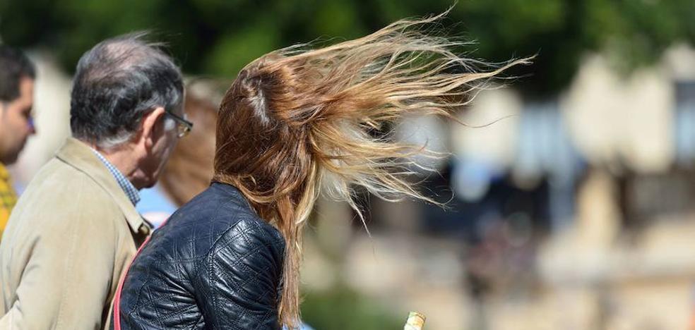 Meteorología mantiene la alerta por fenómenos costeros, viento y nieve hoy en Región