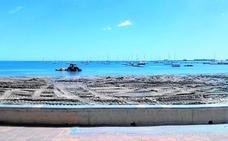 La Fiscalía investiga el uso de un tractor para regenerar las playas en el Mar Menor