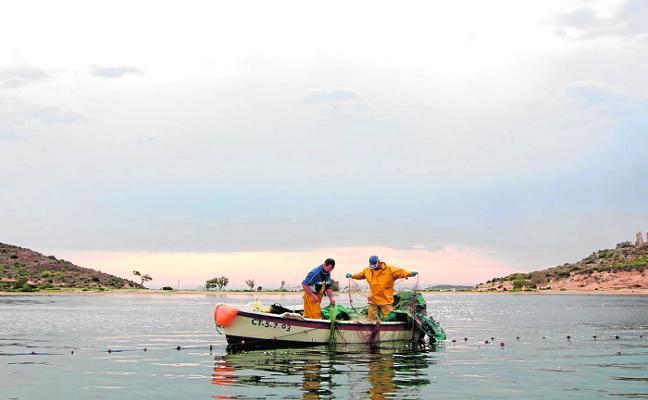 'Pescados con Arte' lanza las redes en tierras aguileñas