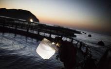Atún rojo: el temporal se llevó seis años de investigación