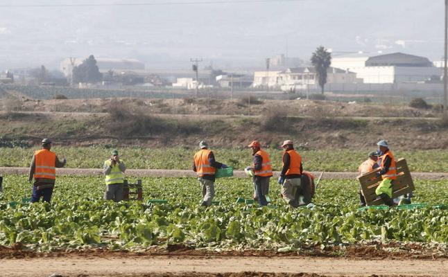 Murcia, la sexta región con más afiliados extranjeros a la Seguridad Social