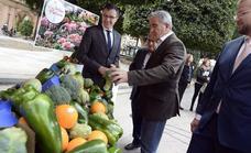 Más de 2 toneladas de hortalizas decorarán Murcia en las Fiestas de Primavera