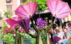 Estallido floral a todo color