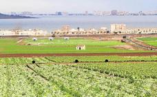 Más de 16.600 explotaciones agrarias de Región se benefician de la reducción del IRPF