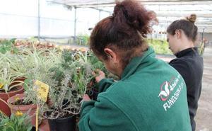 Fundown proveerá las plantas para las barreras vegetales en el Campo Cartagena