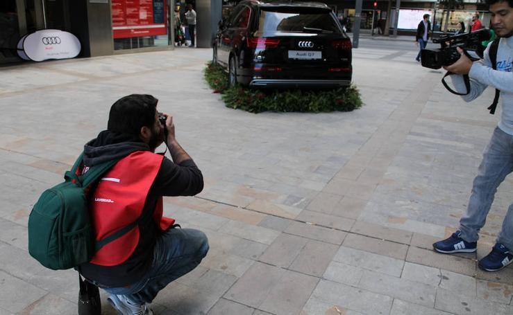IX Maratón Fotográfico Murcia en Flor (II)