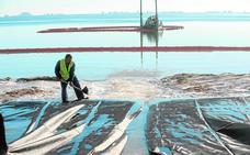 La 'araña finlandesa' dañó la pradera sumergida al dragar el Mar Menor