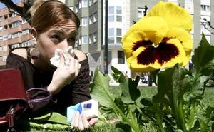 Así será la primavera para los alérgicos de la Región de Murcia