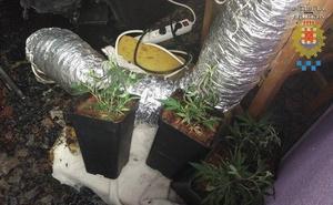 El incendio en una vivienda de El Palmar permite descubrir una plantación de marihuana