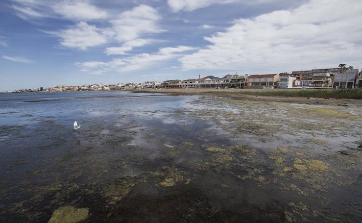 Lamentable estado del Mar Menor en Los Nietos