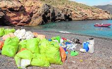 Más plásticos que vida marina