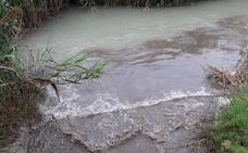 La CHS investiga dos vertidos al río Segura en Alcantarilla y Las Torres de Cotillas