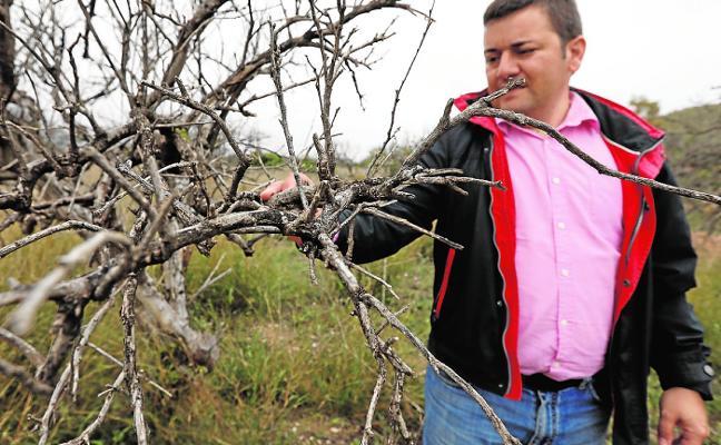 La falta de relevo en el campo se ceba con las comarcas del Noroeste y Río Mula