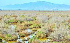 Alhama amplía la red de custodia del territorio con casi 500 hectáreas