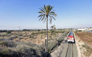 Cs dice que los Presupuestos Generales incluirán un millón para conectar Murcia y El Altet por tren
