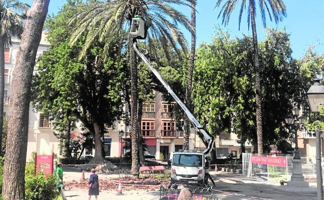 La burocracia bloquea desde 2014 las mejoras que necesitan los jardines