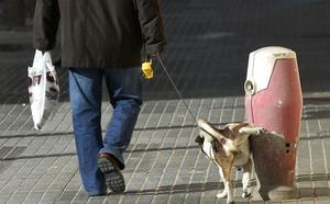 La oposición reclama atajar los orines de los perros con multas y parques especiales