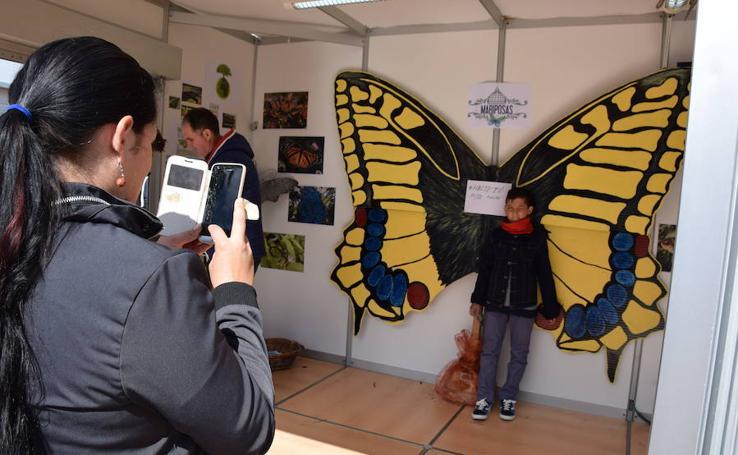 Feria de Asociaciones en La Ribera
