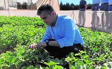 El centro agrario de San Javier ensaya nuevas variedades ecológicas y de abono