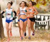 Deportes concede becas a seis deportistas del municipio para su formación y participación en campeonatos