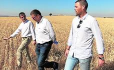 Los agricultores se reparten 1,7 millones en ayudas para 'cuidar' de las aves esteparias