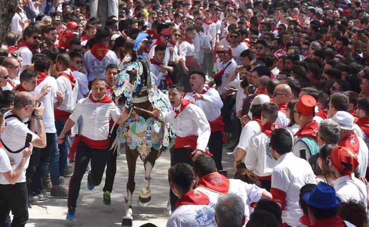La carrera en la Cuesta del Castillo pone el broche final al festejo de los Caballos del Vino