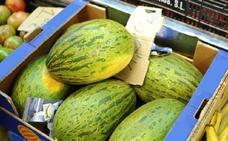 La caída de precios agria la campaña con mejor calidad de melón de los últimos años