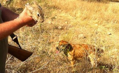 Multan con 7.200 euros al jefe del Seprona en Torre Pacheco por impedir la caza de conejos