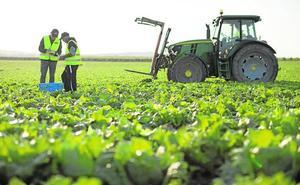 Florette invierte un millón de euros en un semillero de Torre Pacheco para investigar con nuevos cultivos