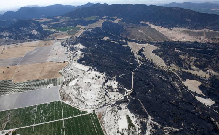 El mayor desastre ambiental de la década en la Región