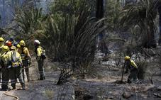 Los bomberos controlan el incendio forestal del Menjú, en Cieza