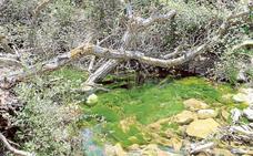 Rincones con alma: Arroyo Tercero