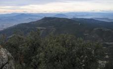 La montaña verde