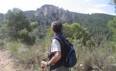 Madroños y rapaces en la Sierra de Salinas