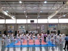 Sesenta luchadores toman parte en la exhibición de taekwondo de los Juegos