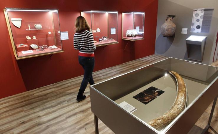 El Museo Arqueológico de Murcia muestra en siete paradas el trabajo de diez años