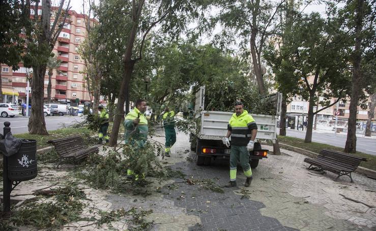 Múltiples incidencias en la Región por el viento