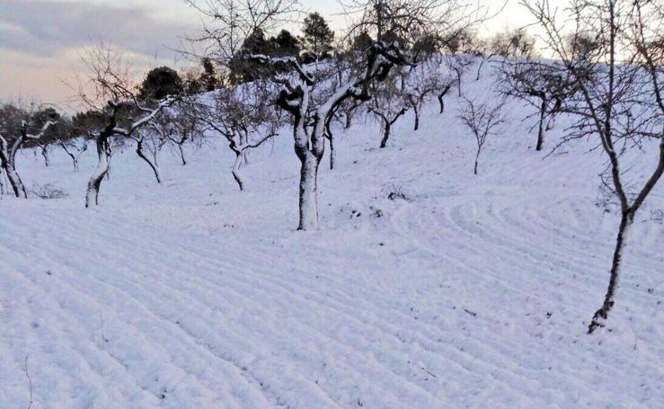 La nieve se deja ver en la Región
