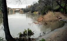Los regantes podrán superar este año con las lluvias y los pozos