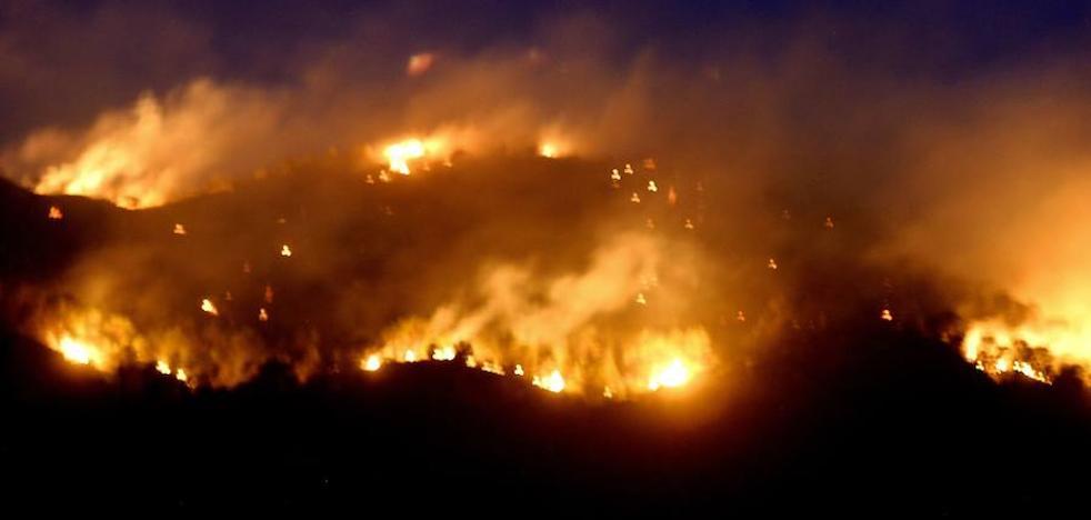 Más de la mitad de los 117 incendios forestales del año pasado fueron intencionados
