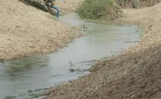 La CHS desembalsa un riego extraordinario de socorro para las Vegas del Segura