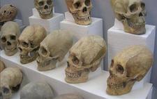 Reconstruyen los milenarios cráneos alargados de Tiwanaku en Bolivia