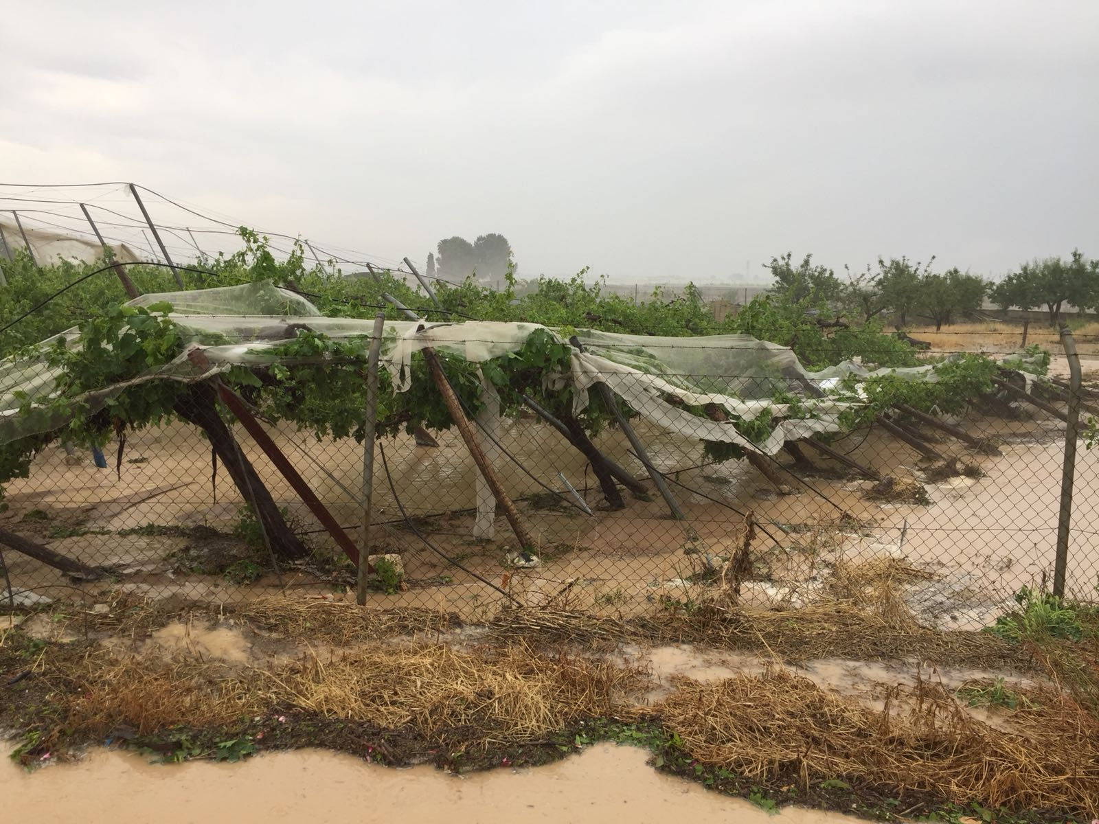 El tercer día de tormentas deja daños en Alhama y en Bullas