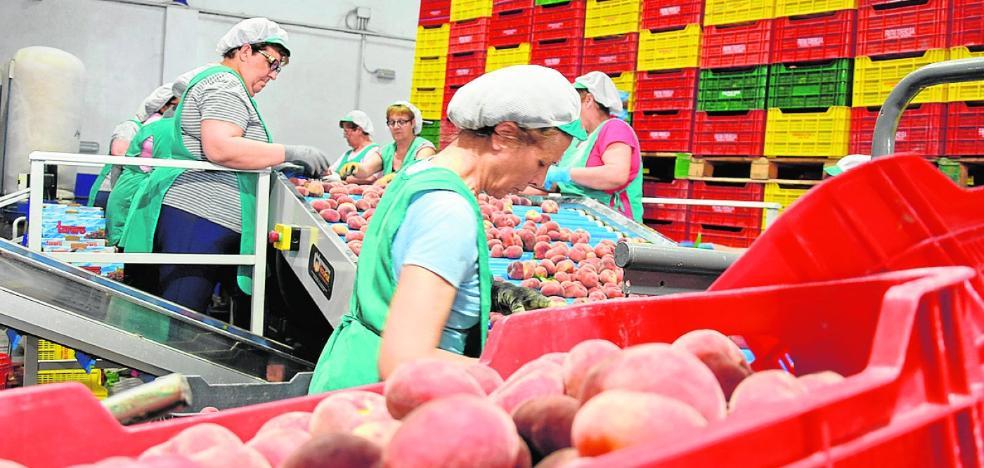 El sector de la fruta confía en remontar tras perder el 30% de la extratemprana