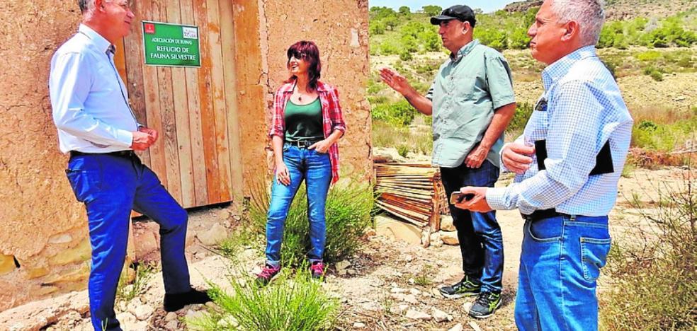 Plantaciones que frenan la erosión y atraen a la fauna