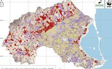 Una de cada cinco hectáreas de cultivo en el Mar Menor es «ilegal», según ANSE y WWF