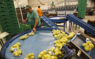 El comercio exterior de la Región cae un 6,4% en el primer trimestre del año