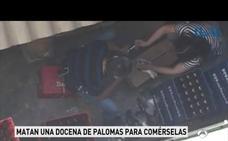 Pillan a dos chinos matando palomas en la trastienda de un restaurante en Baleares