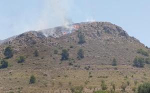 Controlado un incendio forestal en Jumilla