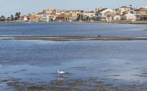 La Comunidad exige al Ministerio que agilice todas las actuaciones que le corresponden en el Mar Menor